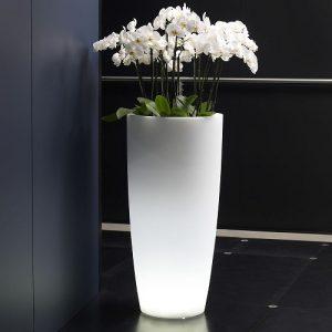 Vaso-luminoso-tondo-luce-bianca